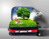 Red suitcase with green nature inside — Stock Photo