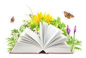 Libro de la naturaleza — Foto de Stock