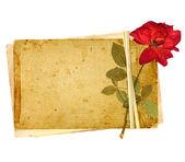 Tarjetas antiguas — Foto de Stock