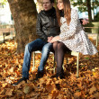 Stock Photo: Young couple in the Luxembourg garden of Paris at fall