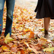 Dating couple at fall — Stock Photo #9323246
