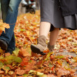 Dating couple at fall - Foto de Stock  