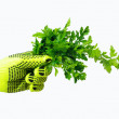 Bunch of parsley in the hand. — Stock Photo #10036613