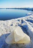 Ice at the coastline. — Stock Photo