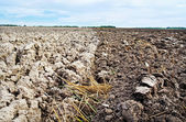 Natural plowed field. — Stock Photo