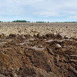 Plowed field. — Stock Photo #10615878