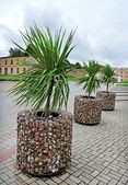 Venspils city. — Stock Photo