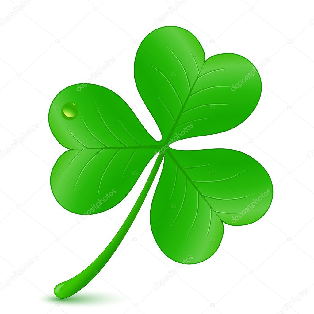 Vector illustration of clover. St. Patrick's day symbol — Stock Vector #8408432