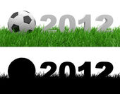 Soccer ball on green grass. 2012 — Stock Photo