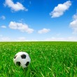 Soccer ball - Foto de Stock  
