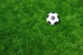 Ball on the grass — Stock Photo