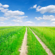 Road in field - Foto Stock