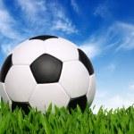 Football — Stock Photo #10465647
