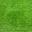 Background green lawn - Foto Stock
