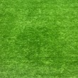 Background green lawn - Stock Photo