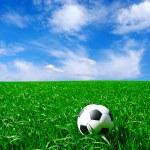 Football — Stock Photo #10572045