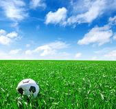 футбольный мяч — Стоковое фото