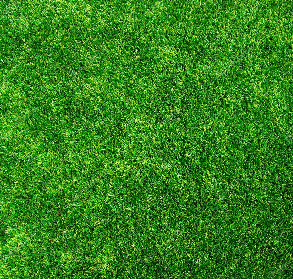 Texture green lawn stock photo ale ks 10572296 - Different type de gazon ...