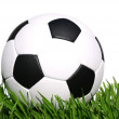 Soccer ball — Stock Photo #10673551