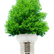 Green energy - Stockfoto