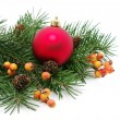 Christmas decoration — Stock Photo #8009833