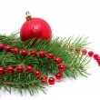 Christmas decoration — Stock Photo #8009843