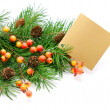 Christmas decoration — Stock Photo #8096250