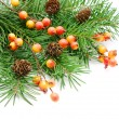 Christmas decoration — Stock Photo #8096251