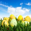 easter eggs — Stock Photo #9191908