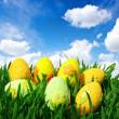 easter eggs — Stock Photo #9314008