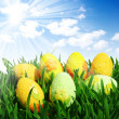 Easter eggs — Stock Photo #9564922