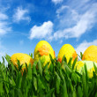 easter eggs — Stock Photo #9822416