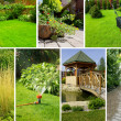 Garden collage - Foto Stock