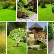 Garden collage — Stockfoto #8527928