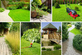 Garden collage — Stock fotografie