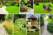 庭のコラージュ — ストック写真