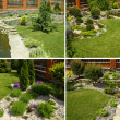 Foto Stock: Garden collage