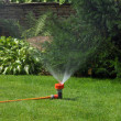 Stock Photo: Sprinkler