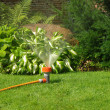 Sprinkler — Stock Photo #9016622