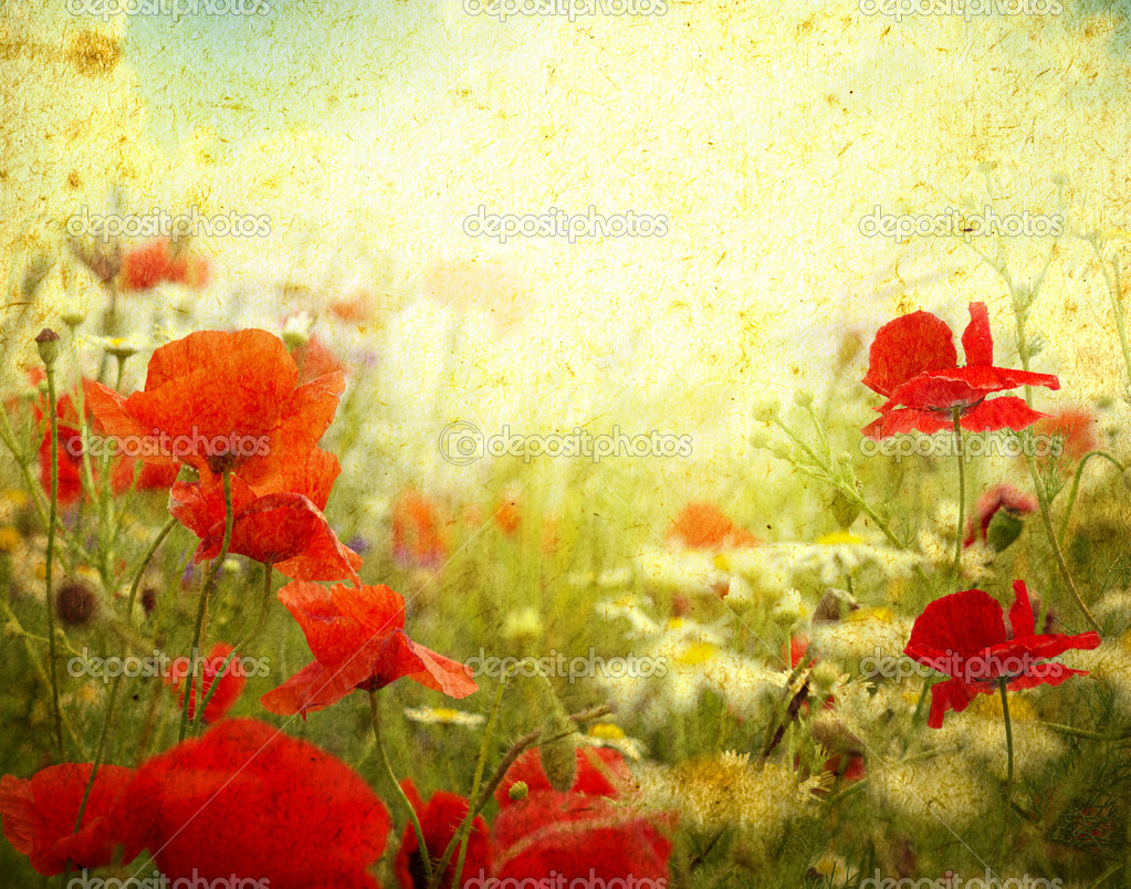Photo of a poppies pasted on a grunge background — Stock Photo #9142940