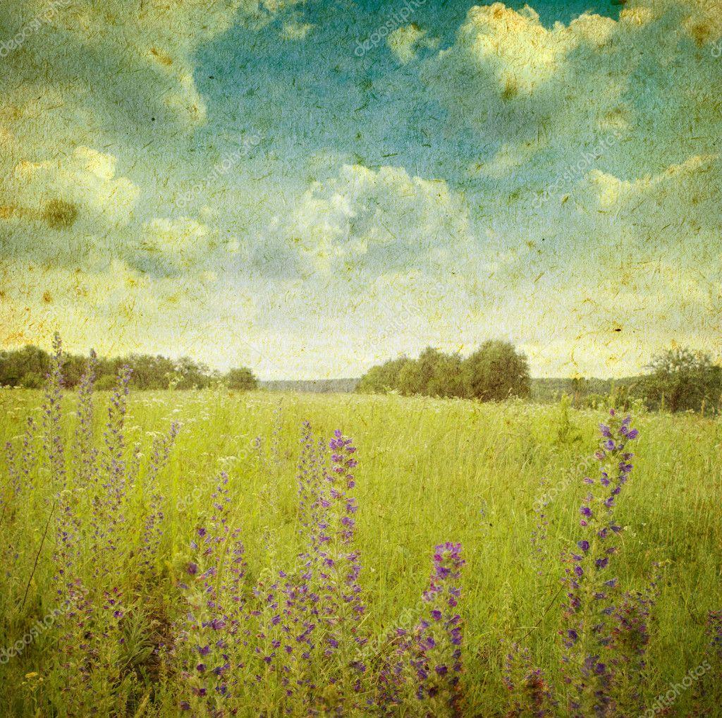 Vintage landscape — Stock Photo © volokhatiuk #9381164