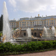 Fountain  and palace  in Lower Park — Foto Stock