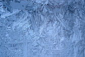 Frost on window — Stockfoto