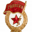 Military badge from the former Soviet Union - Stock fotografie