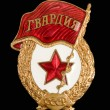 Military badge from the former Soviet Union — Stock Photo #10104500