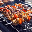 Juicy slices of meat with sauce prepare on fire (shish kebab). — Stock Photo #10183226