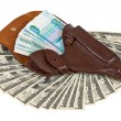 Money in the brown leather holster — Stock Photo