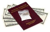 Paketet med drog över dollar för tadzjikistan pass och you.s — Stockfoto