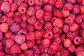 Sweet fresh raspberries closeup — Stock Photo