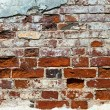 Old brick wall background — Stock Photo #8651066